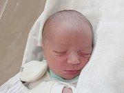 FRANTIŠEK PROCHÁZKA Narodil se 26. dubna v liberecké porodnici mamince Kateřině Procházkové ze Záskalí. Vážil 3,56 kg a měřil 51 cm.