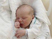 VIKTORIE MAKOVÍNY Narodila se 19. února 2018 v liberecké porodnici mamince Daniele Urbanové z Liberce. Vážila 3,33 kg a měřila 49 cm.