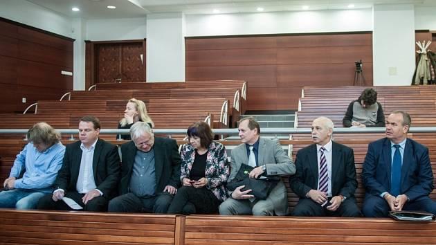Bývalým radním Libereckého kraje navrhuje žalobkyně podmínky.