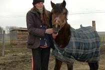 Rok po požáru v Koňském domově důchodců Rolinka v Křižanech je vidět velký kus práce. Na fotografii provozovatelka Zuzana Poláková.