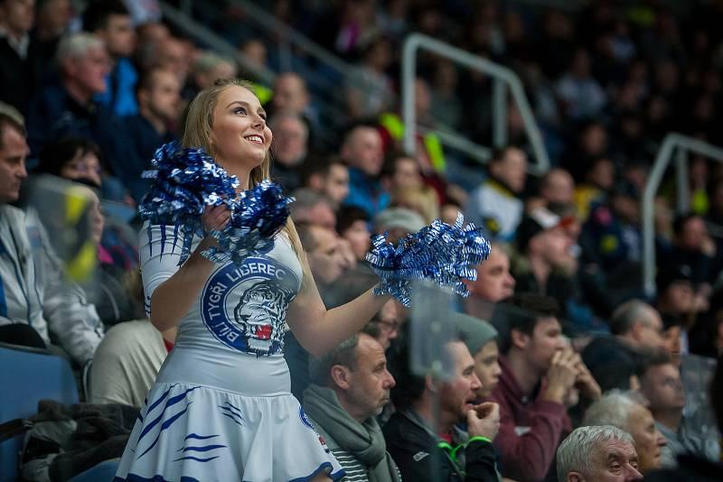 Utkání 47. kola Tipsport extraligy ledního hokeje se odehrálo 4. února v liberecké Home Credit areně. Utkaly se celky Bílí Tygři Liberec a HC Sparta Praha. Na snímku je roztleskávačka Tigers Cats.