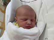 SÁRA SASSMANN  Narodila se 1. února v liberecké porodnici mamince Kateřině Sassmann z Liberce. Vážila 3,33 kg a měřila 52 cm.