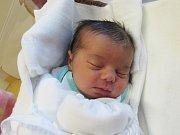 VIKTORIE STEFFANOVÁ  Narodila se 17. ledna v liberecké porodnici mamince Radce Steffanové z Liberce.  Vážila 3,59 kg a měřila 51 cm.