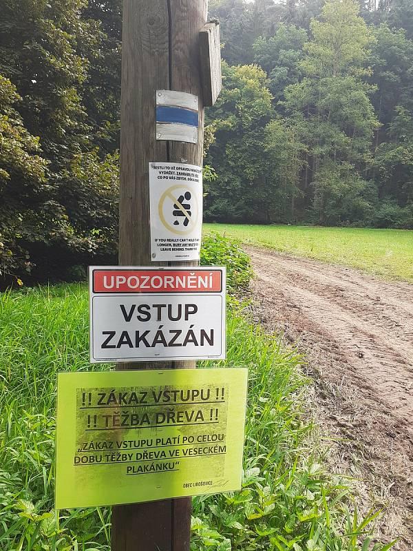 Za devastací části turisticky vyhledávané rezervace Plakánek u hradu Kost v jižní části CHKO Český ráj stojí těžba kůrovcového dřeva.