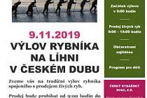 výlov Český Dub
