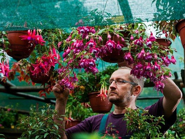 JIŘÍ PEVNÝ věnuje péči o rostliny hodiny denně.