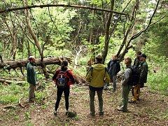 PRALES VZNIKAL RUKAMA DOBROVOLNÍKŮ. Do prací na kácení umělého smrkového lesa a výsadby nového se zapojily stovky dobrovolníků. Výsledek vskutku lahodí oku.