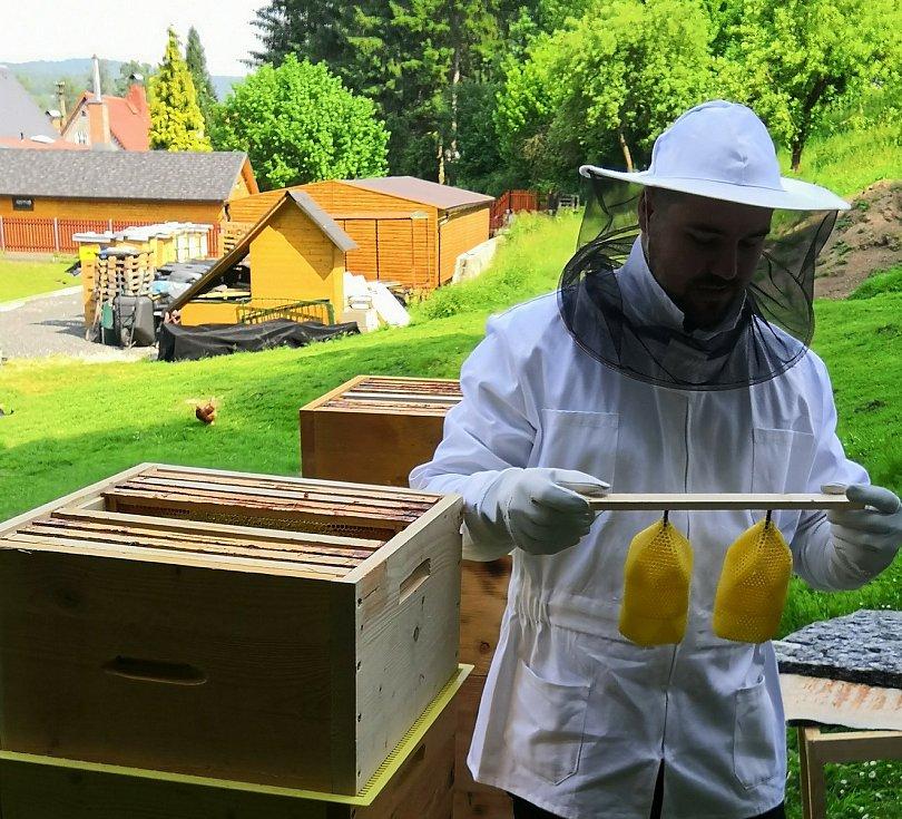 Eduard Seibert ukazuje, jak vznikají svítidla z včelího vosku.