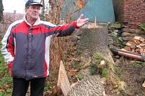 MÍSTO VZROSTLÉHO STROMU TRČÍ PAHÝL. Podle Zdeňka Kupky byly až na jeden všechny pokácené stromy zdravé. Jejich stáří odhaduje na minimálně 150 let. Zbyly z nich pařezy.