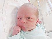 JOSEF BRZEK Narodil se 22. srpna v liberecké porodnici rodičům Dagmar Polákové a Rudolfu Brzkovi z Jablonce nad Nisou. Vážil 2,90 kg a měřil 49 cm.