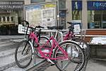 Na snímku růžová kola společnosti Rekola, která začala 21. března 2018 nabízet zájemcům o sdílenou cyklopřepravu své služby i v Liberci.