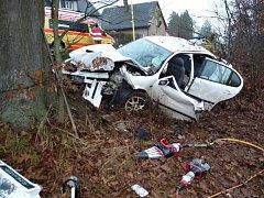 Auto narazilo do stromu.