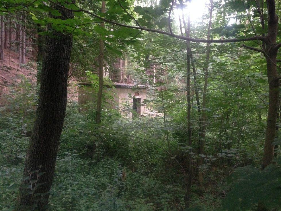 Doupě fetišisty objevili při čištění lesní tůňky.