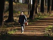 Velkohamerští houbaři při nedělní procházce