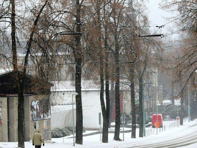 Alej v Masarykově ulici