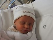 SOFIE STELA JIROUSKOVÁ Narodila se 22. listopadu v liberecké porodnicimamince Janě Jirouskovéz Chrastavy. Vážila 2,36 kg a měřila 49 cm.