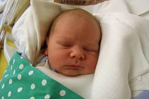 Dominik Homolka se narodil 16. května v liberecké porodnici mamince Karolíně Homolkové z Jeřmanic. Vážil 3,2 kg a měřil 49 cm.