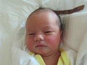 KLÁRA STRÁNSKÁ  Narodila se 4. října v liberecké porodnici mamince Tereze Stránské z Liberce. Vážila 3,20 kg a měřila 51 cm.