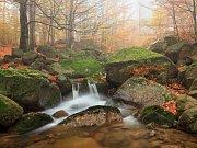 Podzim na Černém potoku.