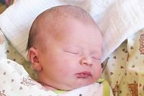 Mamince Petře Šámalové z Liberce se 7. dubna v jablonecké porodnici narodila dcera Barbora Šámalová. Měřila 48 cm a vážila 2,90 kg. Blahopřejeme!