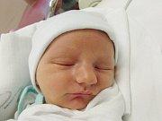 ADAM HÜBNER Narodil se 25. července v liberecké porodnici mamince Lence Hübnerové za Zásady. Vážil 3,10 kg a měřil 51 cm.