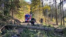 Dobrovolní hasiči z Hrádku nad Nisou zasahovali u popadaných stromů.