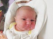 ELLA ŽÁČKOVÁ Narodila se 8. dubna v liberecké porodnici mamince Janě Procházkové z Hodkovic n. M. Vážila 3,11 kg a měřila 49 cm.