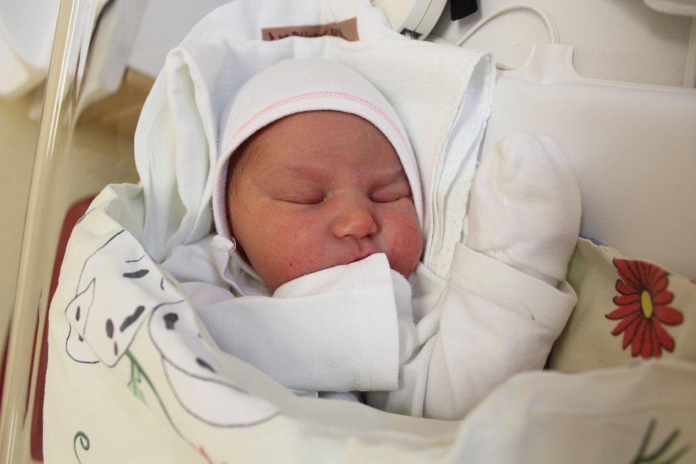 Eliška Zemánková. Narodila se 28. prosince v liberecké porodnici mamince Anně Kvapilové z Liberce. Vážila 3,555 kg a měřila 51 cm.