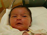 NATÁLIA MARTINIAKOVÁ  Narodila se 8. ledna v liberecké porodnici mamince Michaele Martiniakové z Liberce.  Vážila 3,73 kg a měřila 51 cm.