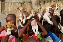 Africké děti jsou vzteklinou nejohroženější.