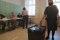 Volby do krajských zastupitelstev v Liberci. Miroslava Focke.
