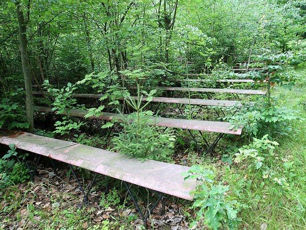 Letní scéna v Lidových sadech je již desetiletí opuštěná a je to také znát. Mezi sedačkami rostou stromy až s třiceticentimetrovým obvodem.