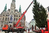 Náměstí v Liberci už zdobí vánoční strom.
