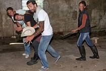 Farmáři pořádali charitu pro koně.