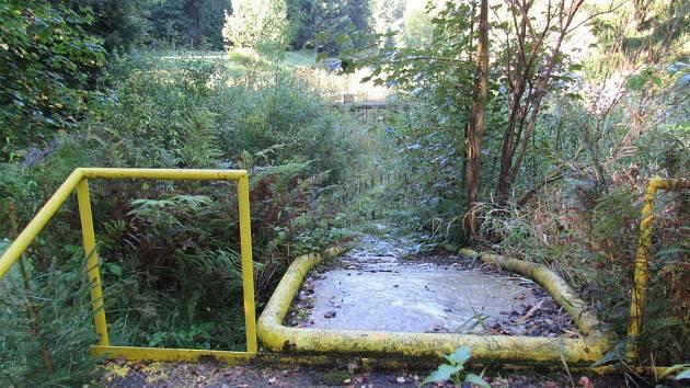 """LESNÍ KOUPALIŠTĚ je dnes vskutku """"lesní."""" Skluzavku do dětského bazénu už pohlcuje bujná vegetace."""
