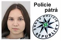 Policisté pátrají po sedmnáctileté dívce z Liberce. Už dva měsíce nepřišla domů