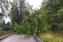 Spadlé stromy zablokovaly 11. července 2021 hlavní silnici 10 ze Železného Brodu na Tanvald. Zkomplikovaly i dopravu na dalších místech.