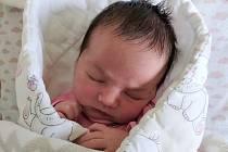 Rodičům Lucii a Pavlovi Vojtíškovým z Košťálova Šárka se ve středu 29. dubna ve 21:23 hodin v jilemnické porodnici narodila dcera Šárka. Měřila 50 cm a vážila 3,35 kg.
