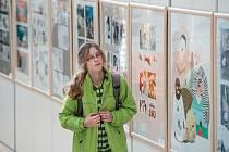 Jednadvacet panelů představuje tvorbu jednadvaceti ilustrátorů. Výstava nabízí to nejlepší, co v loňském roce dětská kniha nabídla.