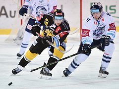 Bílý Tygři Liberec - HC Verva Litvínov