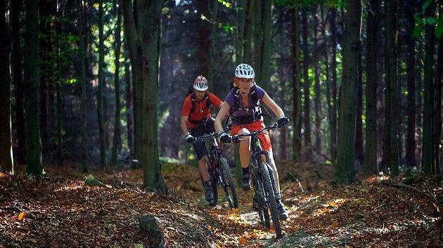 Síť stezek Singltrek pod Smrkem je Evropskou komunitou sportu 2019.