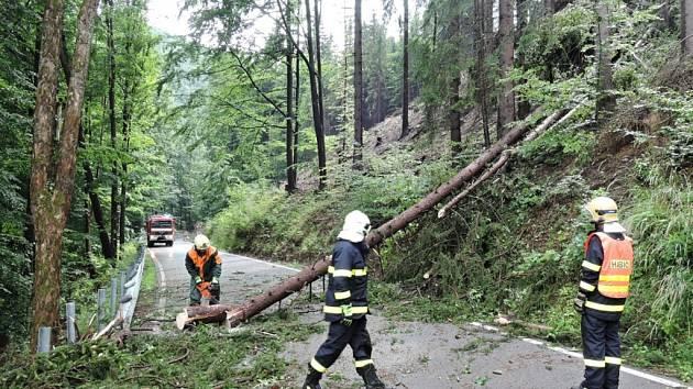 Popadané stromy na Liberecku