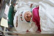 ANEŽKA SMOLOVÁ Narodila se 17. října 2018 v liberecké porodnici mamince Monice Smola ze Stráže pod Ralskem. Vážila 2,80 kg.