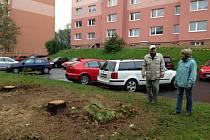 LOKALITA ŽITNÁ. Podle tamních obyvatel padlo v rámci revitalizace asi dvacet stromů zcela zbytečně. Prostor se prý proměnil v betonovou plochu bez fantazie.