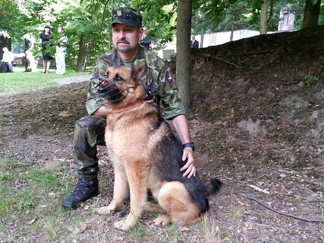 Pes hrdina, ovčák Athos, který za práci  při operacích v Afghanistánu obdržel ocenění od ministra obrany Vlastimila Picka.