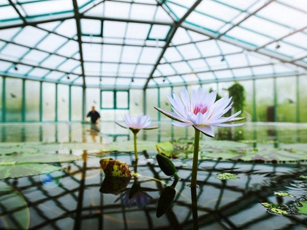 Pavilon leknínů v Botanické zahradě.