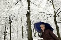 Sněžení na konci března obyvatele Liberce zaskočilo.
