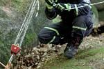 Těžařský kůň uvízl mezi balvany v lese v Oldřichově v Hájích na Liberecku. Zraněného se ho podařilo hasičům vyprostit po třech hodinách.