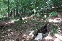 Z Clam-Gallasovské obory stále mizí sloupky.  Zachránit by ji mohlo prohlášení za kulturní památku.