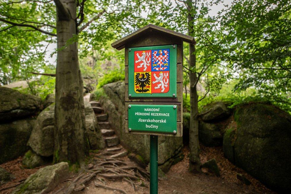 Národní přírodní rezervace Jizerskohorské bučiny v Jizerských horách.